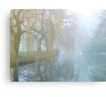 Willow Dream Canvas Print