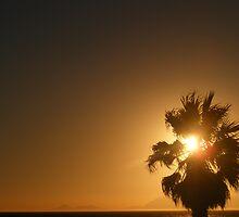 Sundown by Melt