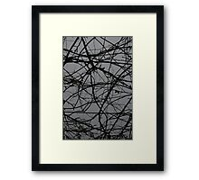 Winter Beans Framed Print