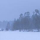 Blizzard by Kasia Nowak