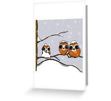 Snowy Owlets Greeting Card