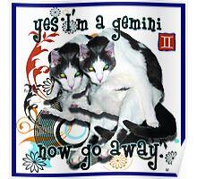 Checkers Gemini Poster
