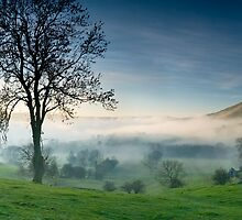 Creeping Mist by Tony Fallon