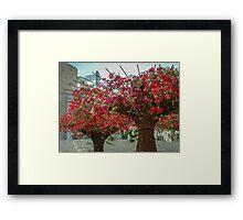Summer Flower Pink & Red Cascade Framed Print