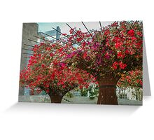 Summer Flower Pink & Red Cascade Greeting Card
