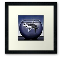 Shark Bowl Framed Print