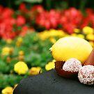 Sweet & Sour by Zeanana