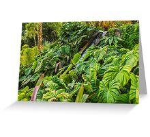 Caribbean Tropical Garden with Water Cascade Greeting Card