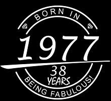 born in 1977... 38 years being fabulous! by birthdaytees
