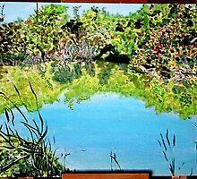 The Audubon Nesting Rookery - Florida by pattymaryclare