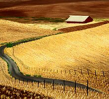 Waves Of Grain by GeorgeBurr