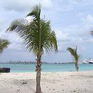 The Bahamas...Paradise by gypsykatz