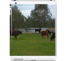 Cattle grazing iPad Case/Skin