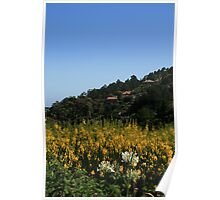 Hillside Homes Poster