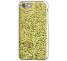 Butterfly and Chrysalis iPhone Case/Skin