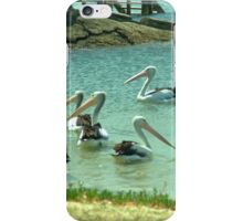Pelicans by the shore  iPhone Case/Skin