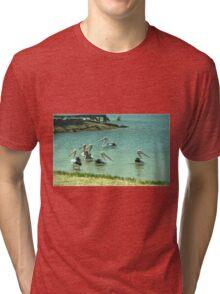 Pelicans by the shore  Tri-blend T-Shirt