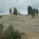 Hillsides by gypsykatz