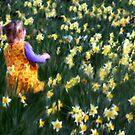 Spring by Annette Blattman