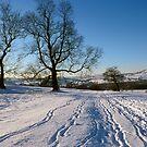 Snowy tracks by EileenLangsley