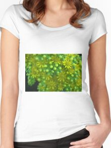 Green and yellow flowers Women's Fitted Scoop T-Shirt