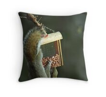 Squirrel working for peanuts! Throw Pillow