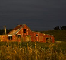 The Old Woolshed by Angela McConnell