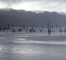 dusk approaches near Mackintosh Dam, Tullah, Tasmania by gaylene