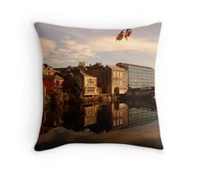 Reflections of Cork Throw Pillow