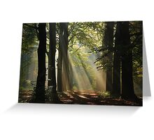 In the enchanted forest Greeting Card