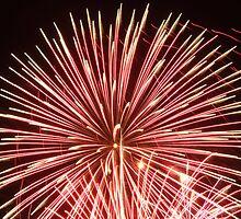 silent firework by samara