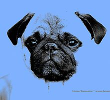 mops puppy pup baby blue by fuxart