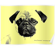mops puppy yellow - french bulldog, funny, cute, love Poster