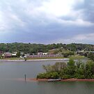 Panoramic view of north shore Chattanooga Tennessee by © Joe  Beasley IPA
