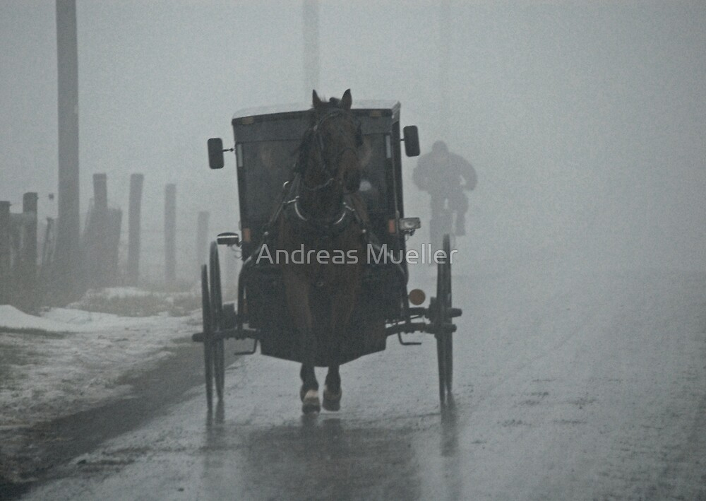 Amish Buggy In The Winter Fog by Andreas Mueller