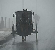 Amish Buggy In The Winter Fog by Andy Mueller