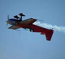 Upside Down Eagle @ Temora 2007 by muz2142