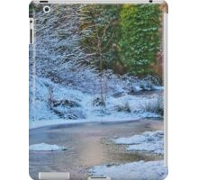 Freeze Frame iPad Case/Skin