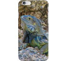 'Tis a Reptilian life in Aruba. iPhone Case/Skin