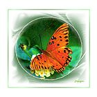 Fluttering By by Julie's Camera Creations <><