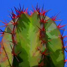Cactus Blue and Red by agtaylor