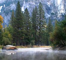 Morning Dew Merced River by Henrik Lehnerer