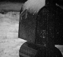 Mailbox by randi1972