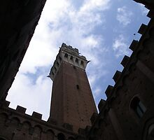 Siena Tower by Challis