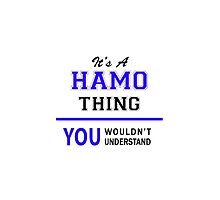 It's a HAMO thing, you wouldn't understand !! by thenamer