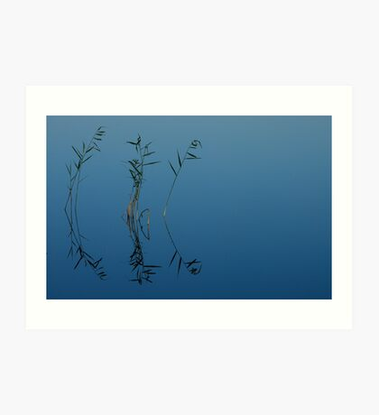 Just a few reeds Art Print