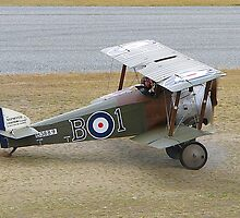 Sopwith Camel by stevealder