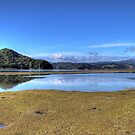 Whitianga Estuary by Robyn Carter