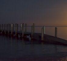 Moonlight Fishing by Neil Bushby