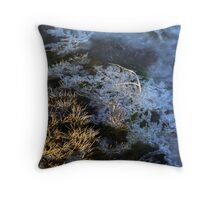Icy pool Throw Pillow